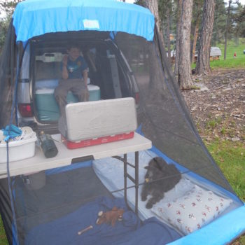 Toyota Previa Camp Stove Kids Dog